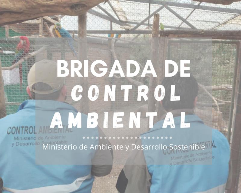 Brigada de control ambiental